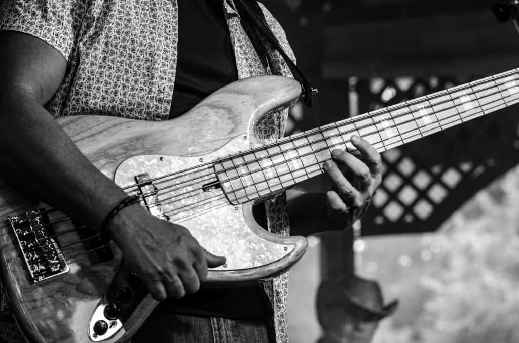 Best 5 String Bass Guitar Roundup